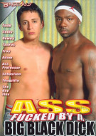 Ass Fucked By A Big Black Dick Porn Movie
