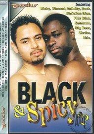 Black & Spicy #2 Porn Video