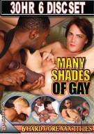 Many Shades Of Gay Porn Movie