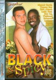 Black & Spicy #3 Porn Video