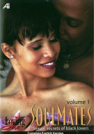 Soulmates 1 - Sexual Secrets For Black Lovers Porn Movie