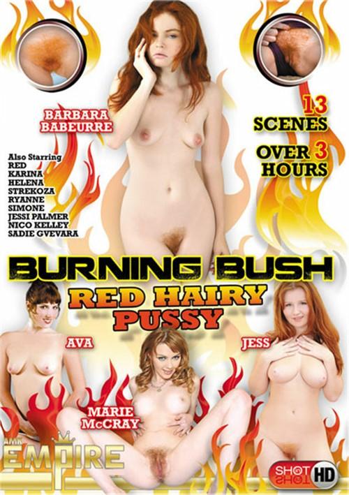 Burning Bush Red Hairy Pussy