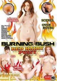Burning Bush Red Hairy Pussy Porn Movie