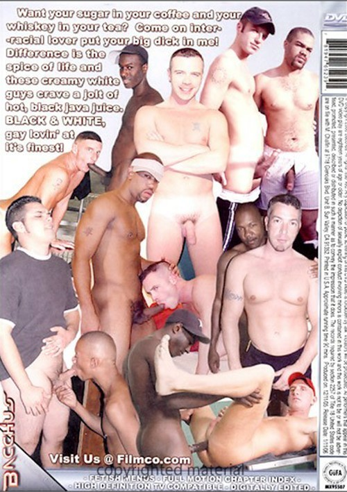 Cream Coffee Dvd Gay 104