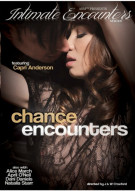 Chance Encounters Porn Movie
