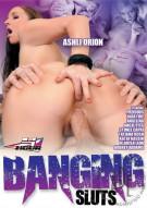 Banging Sluts Porn Movie