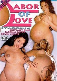 Labor of Love Porn Video