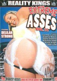 Extreme Asses Vol. 11 Porn Movie