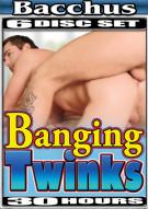 Banging Twinks Porn Movie