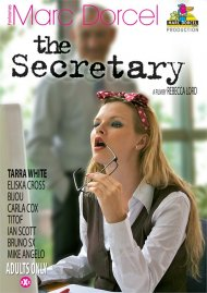Secretary, The Porn Movie