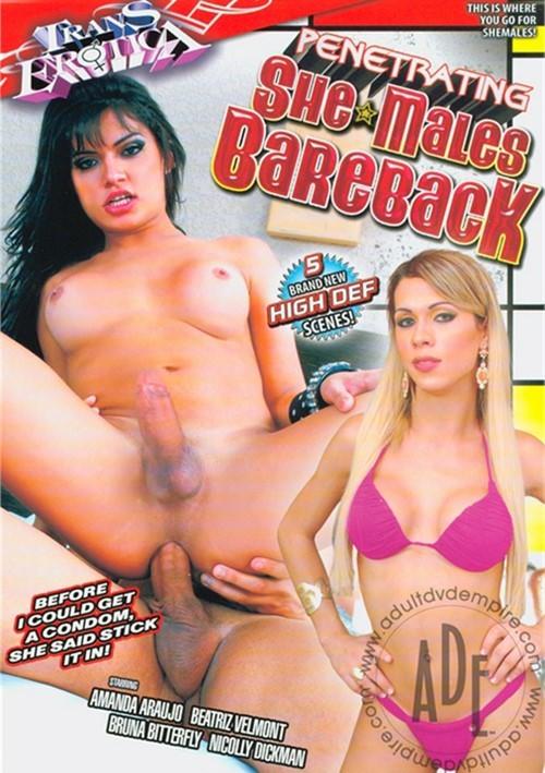 Penetrating She-Males Bareback DVD Porn Movie Image