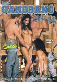 Gangbang Girl 14, The Porn Video