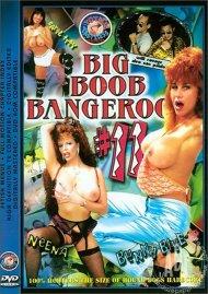 Big Boob Bangeroo 11 Porn Movie