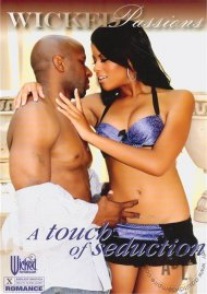 Touch of Seduction, A Porn Movie