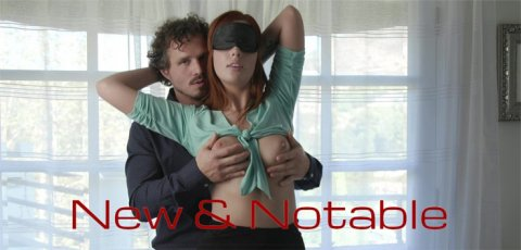 Pornstars stars appear in a POV porn scene.