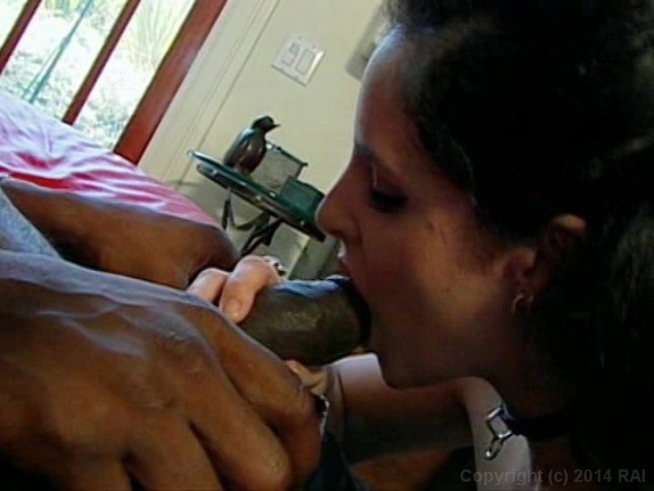 Tight white girls big black cocks, nude job tumblr