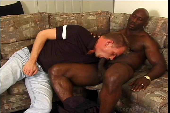 Black White Guys Sucking