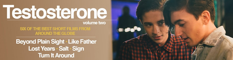 Buy Testosterone: Volume Two gay cinema DVD from TLA Releasing.