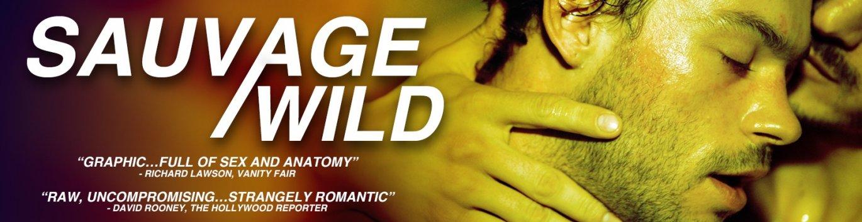 Buy Sauvage/Wild gay cinema DVD starring Felix Maritaud.