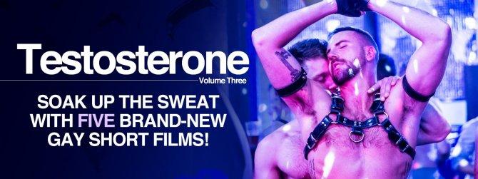 Buy Testosterone Volume Three gay cinema from Dekkoo Films.