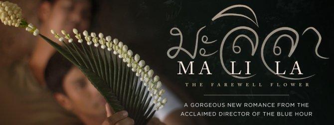 Watch Malila gay cinema VOD from TLA Releasing.