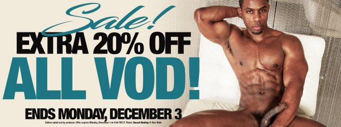 Take 20% off all gay porn VOD!