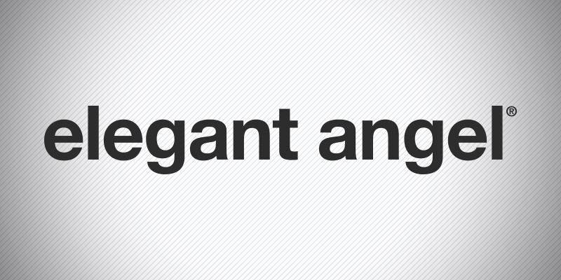 Elegant Angel Banner.
