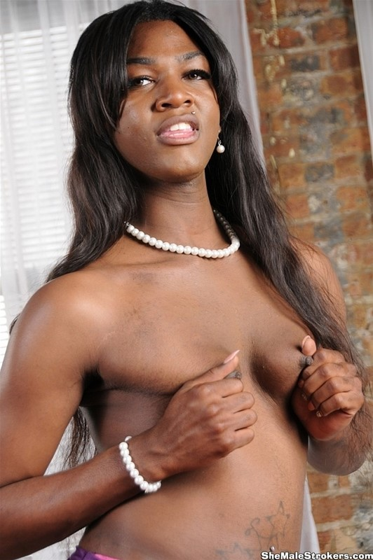 Shemale strokers barbie 1