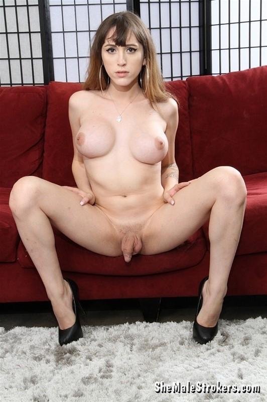 Shemale pornstars