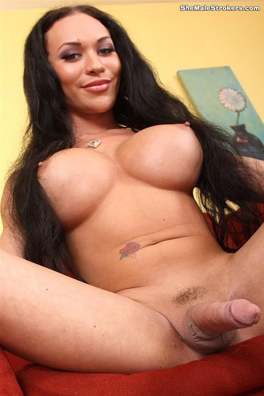 Brunette Tranny Mia Isabella Fucks A Tied Man's Ass