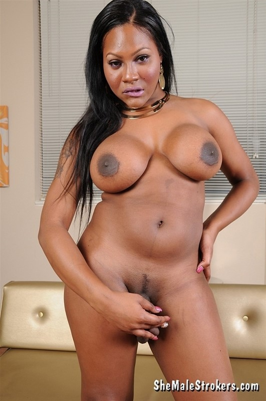 Transsexual out call phoenix