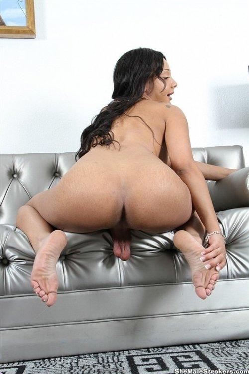 Shemale Sunshyne Monroe Sexy