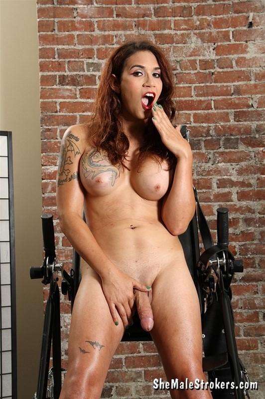 Random Photo Gallery Teen mtf transsexual