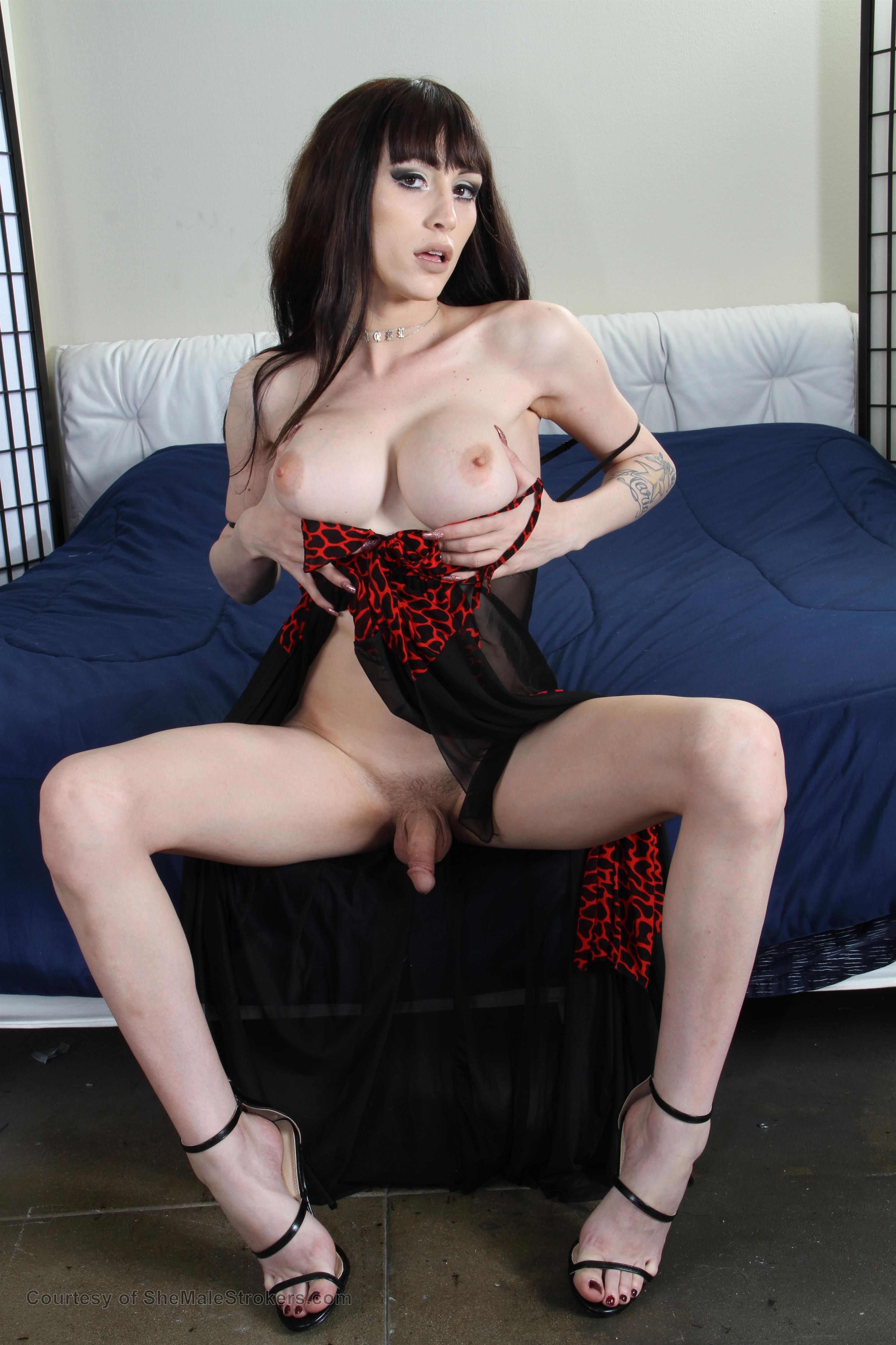 Young Well Hung Tranny Movies