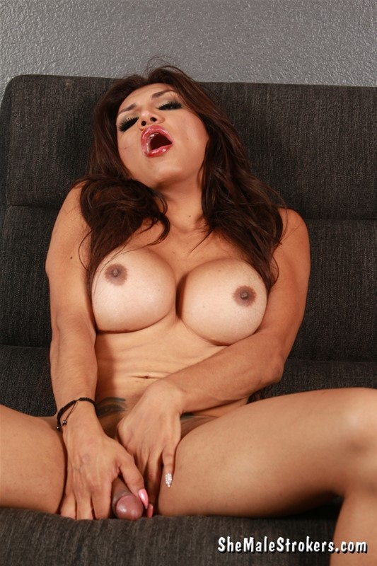 Casting couch solo play with busty shemale bomb jessy dubai