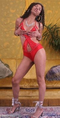 Hollis recommend best of strokers roxie shemale