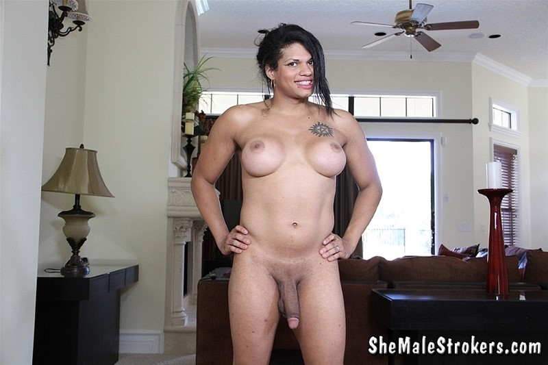 Carter recommend best of shemale strokers black roxie