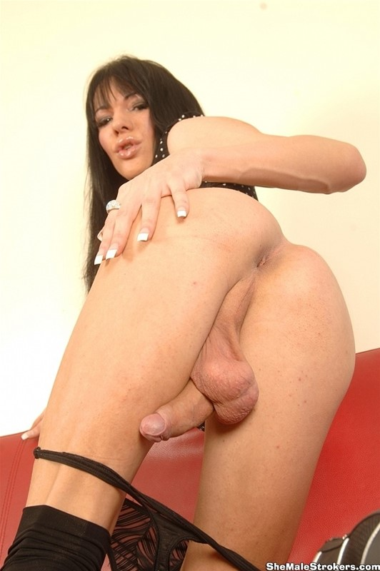 shemale-strokers-galleries-foxxx