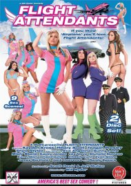 Flight Attendants Boxcover