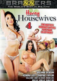 Horny Housewives 4 Boxcover