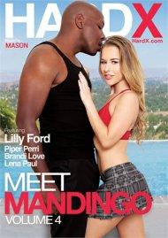 Meet Mandingo Vol. 4 Boxcover