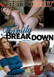 Ashley Adams in Family Breakdown Vol. 1 Boxcover
