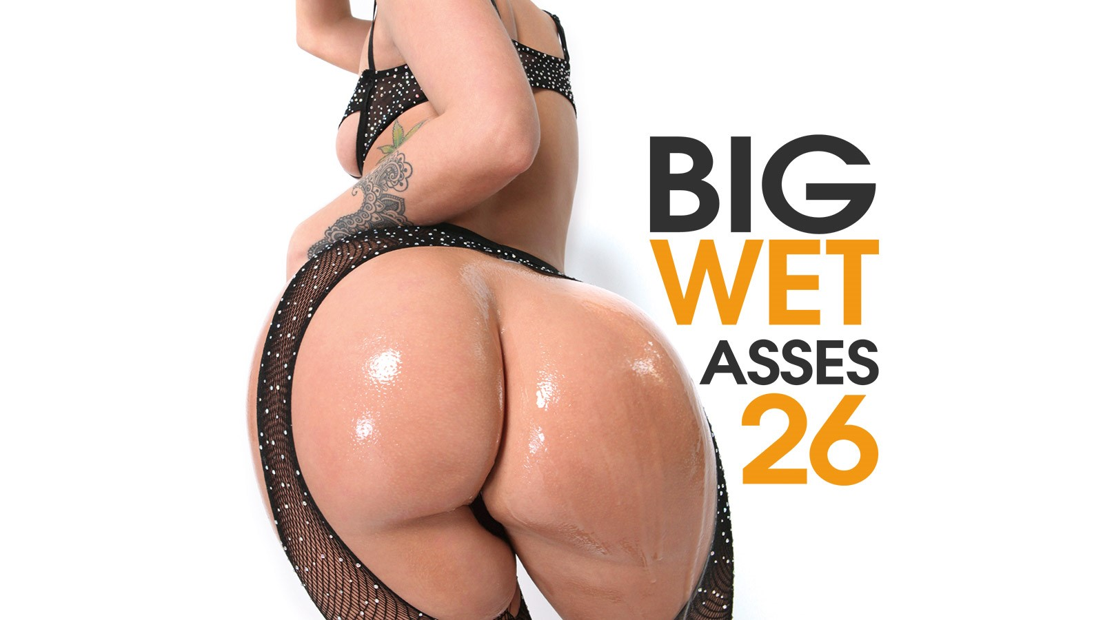 big wet asses #26 | elegant angel | sugarinstant