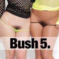 Bush Vol. 5
