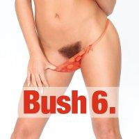 Bush Vol. 6