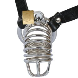 Fetish Fantasy Extreme Chastity Belt 2 Product Image