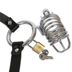 Fetish Fantasy Extreme Chastity Belt 4 Product Image
