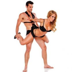 Whip Smart: Body Swing Product Image