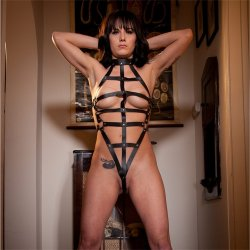 Rapture: Female Leather Bondage Harness 3 Product Image