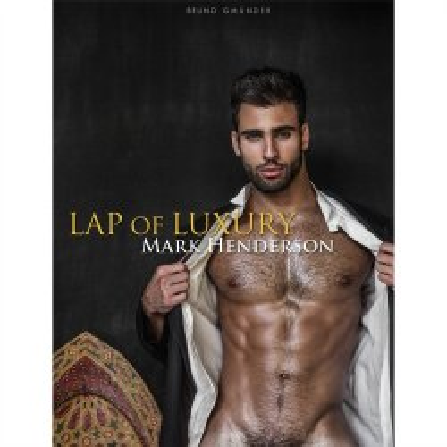 Lap of Luxury 1 Product Image